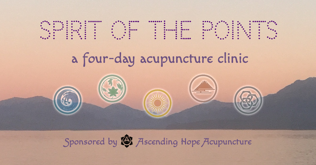 Spirit of the Points: a four-day clinic at Ascending Hope Acupuncture